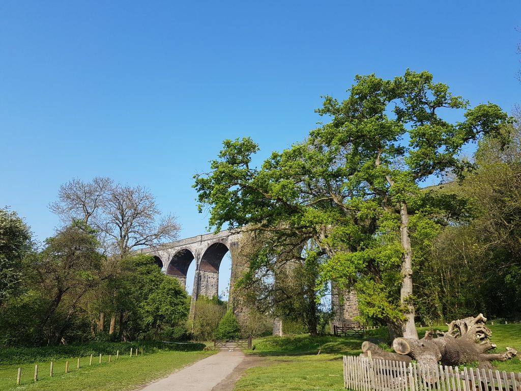 Porthkerry Viaduct in the Vale Of Glamorgan