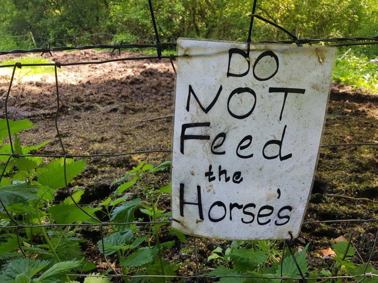 Vale Life Don't Feed Horses